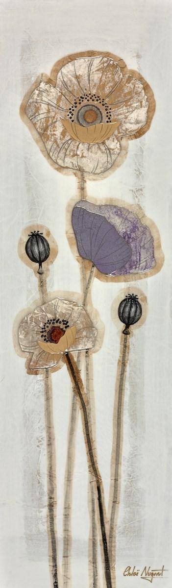 Mixed Poppies VI